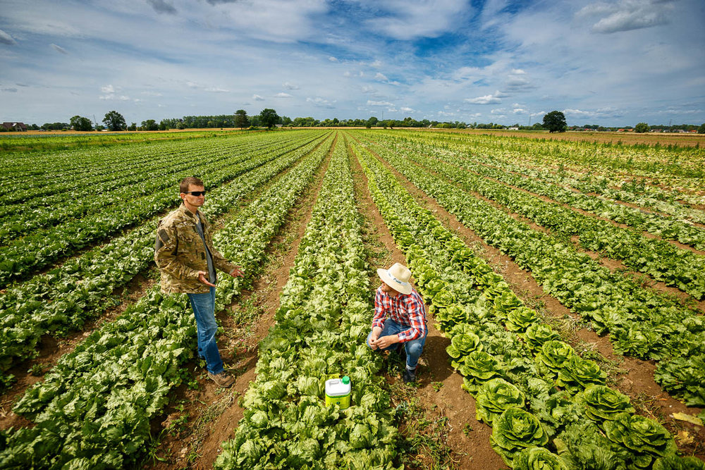 Agricultural Managers